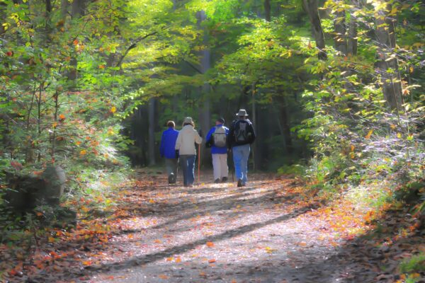 7 Best Places for Walking in Delaware, Ohio